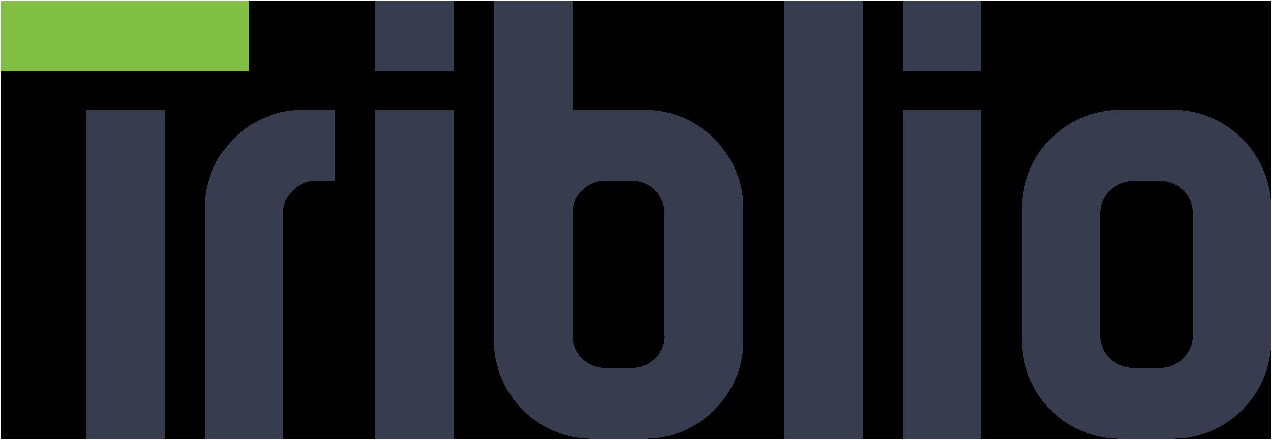 bii19_triblio_logo